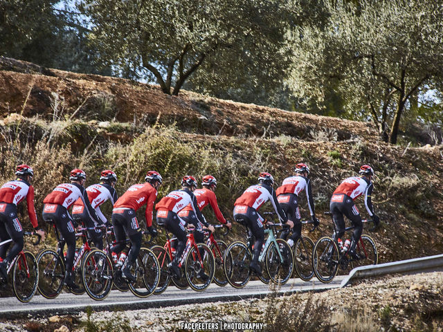 In the picture: Lotto Soudal at training camp
